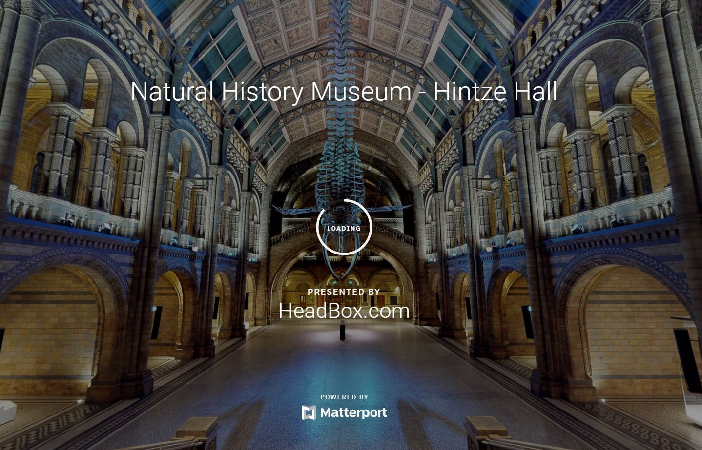 Natural History Museum 3D - 360 Virtual Tour May 26 2020