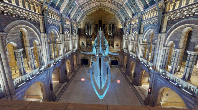 Online Travel: Natural History Museum, London  Launches 3D Virtual Tour