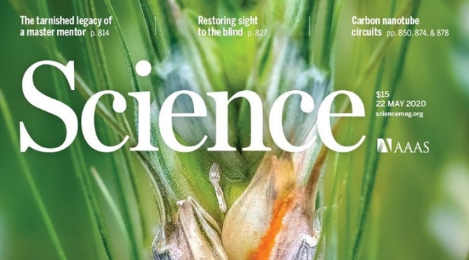 TOP JOURNALS: RESEARCH HIGHLIGHTS FROM SCIENCE MAGAZINE (MAY 22, 2020)