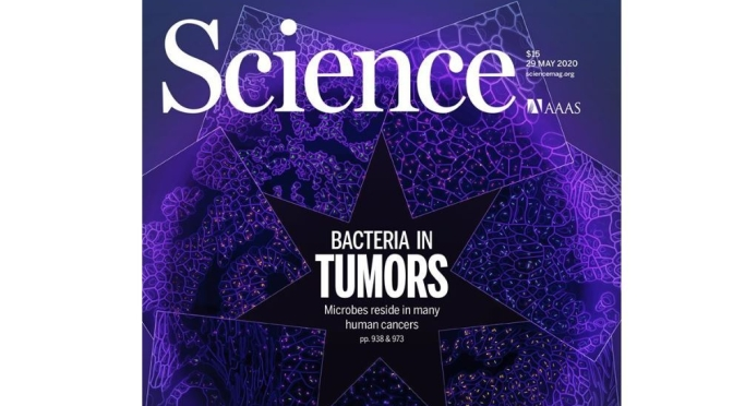 TOP JOURNALS: RESEARCH HIGHLIGHTS FROM SCIENCE MAGAZINE (MAY 29, 2020)