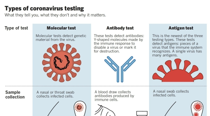 "New Infographic: ""Types Of Coronavirus Testing"""