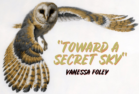VANESSA FOLEY - TOWARD A SECRET SKY