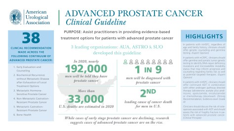 Infographic-Advanced-Prostate-Cancer-Guideline Infographic