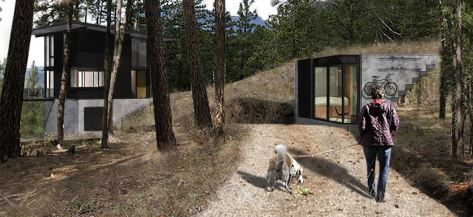 Arrowleaf Cabin - GoCstudio - Seattle 2020