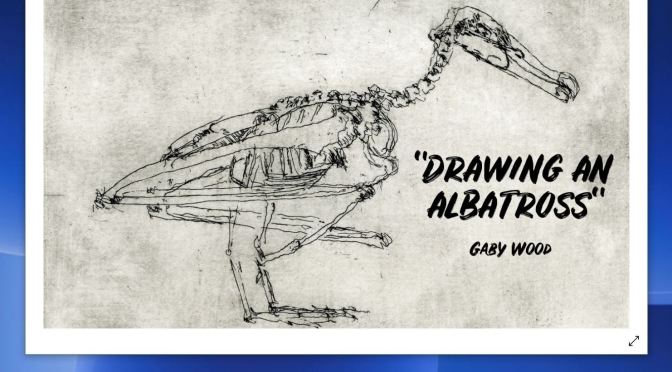 """Podcasts: """"Drawing An Albatross With A Camera Lucida"""" By Gaby Wood (LRB)"""