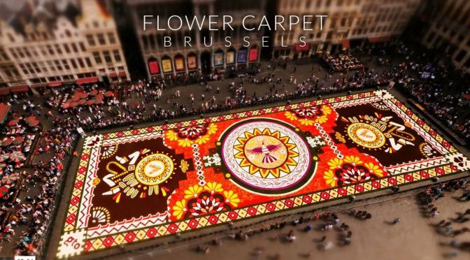 "Timelapse Travel Video: ""Flower Carpet – Brussels"" By Joerg Daiber (2020)"