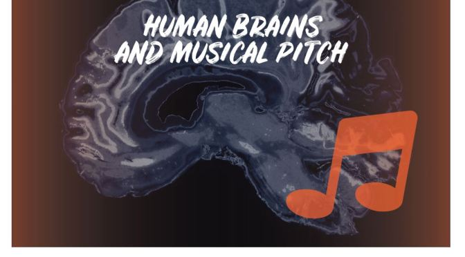 "New Research Podcasts: ""Human Brains Are Wired To Enjoy Musical Pitch"""