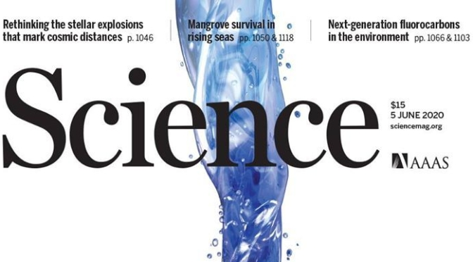 TOP JOURNALS: RESEARCH HIGHLIGHTS FROM SCIENCE MAGAZINE (JUNE 5, 2020)