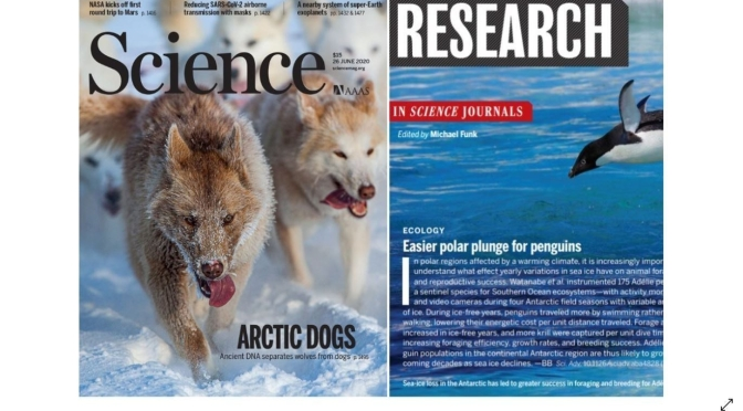 TOP JOURNALS: RESEARCH HIGHLIGHTS FROM SCIENCE MAGAZINE (JUNE 26, 2020)