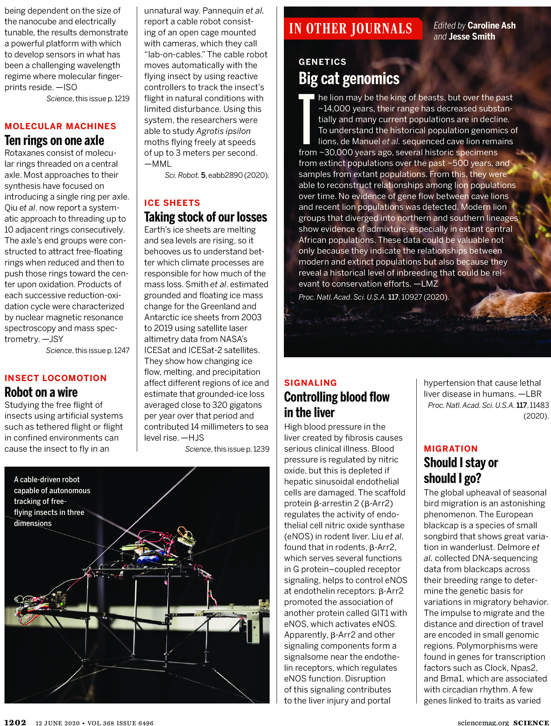 Science Magazine Research Highlights - June 12 2020