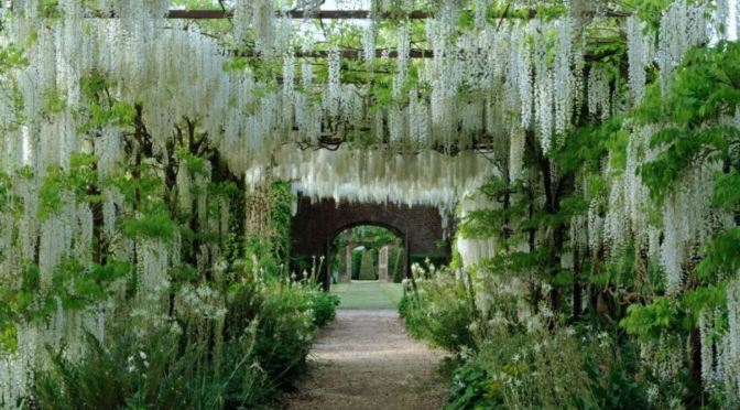 "Top Gardens: Astonishing ""Wisteria Pergolas"" Of Petworth House, England"