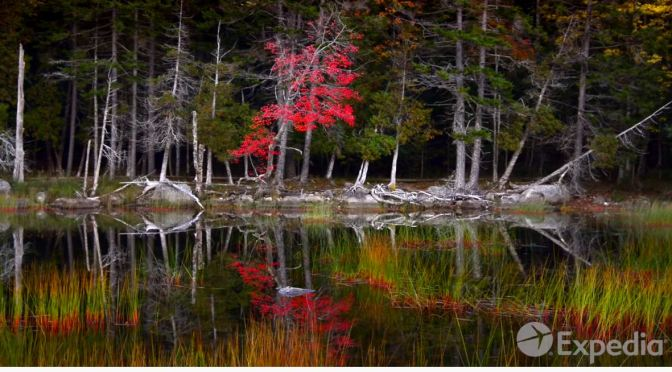 """Top Travel Guide Videos: """"Acadia National Park"""""""