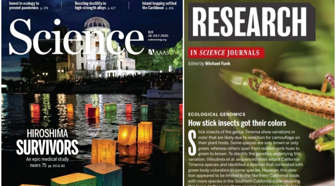 TOP JOURNALS: RESEARCH HIGHLIGHTS FROM SCIENCE MAGAZINE (JULY 24, 2020)