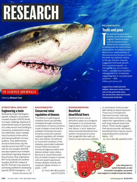 Science Magazine Research Highlights July 10 2020