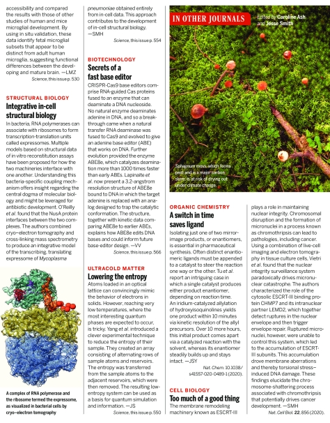 Science Magazine Research Highlights - July 31 2020