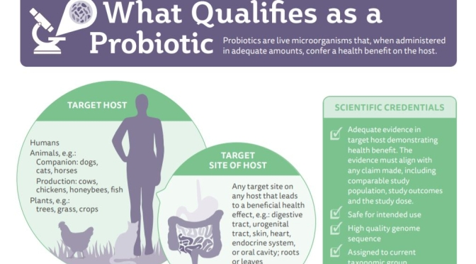"New Health Infographics: ""What Are Probiotics?"""