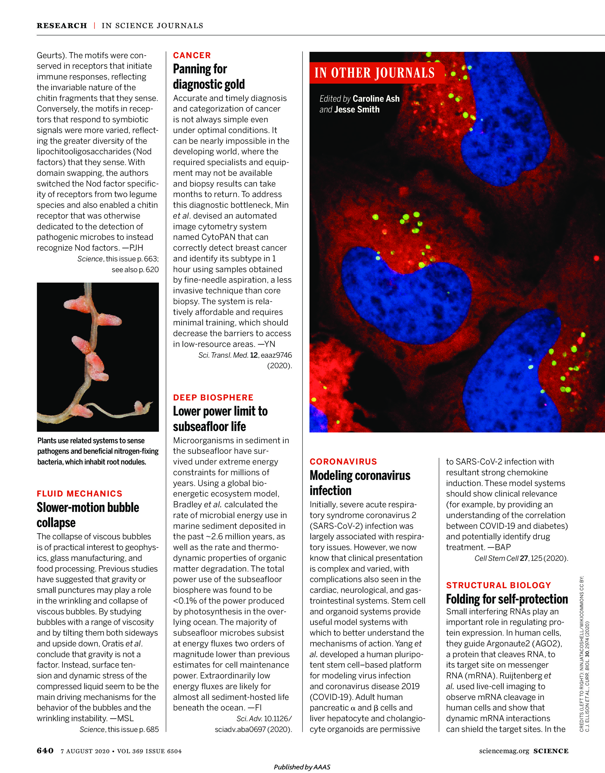 Science Magazine Research Highlights - August 7 2020
