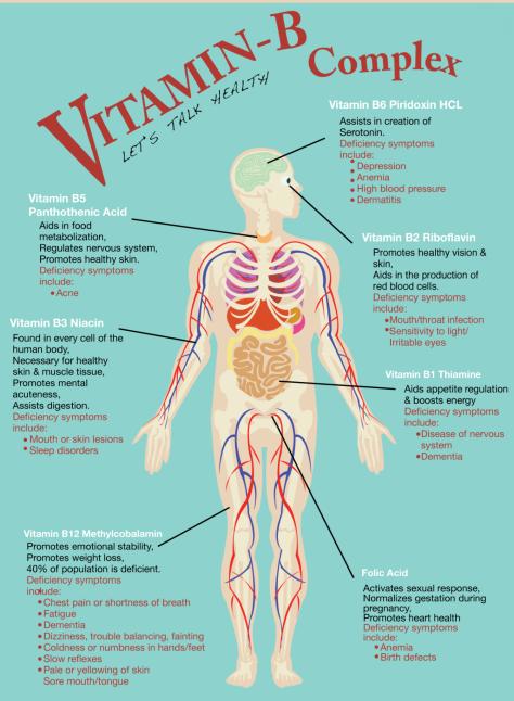 Vitamin B Complex - Infographic