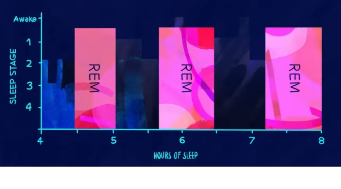 "Health Video: ""The Stages Of  REM & Non-REM Sleep"""
