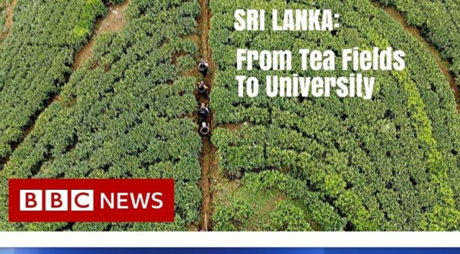Travel & Culture Video: 'Sri Lanka – From Tea Fields To University' (BBC News)