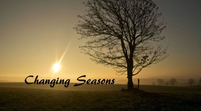 Timelapse Travel Videos: 'Changing Seasons' In Flanders, Belgium (2020)