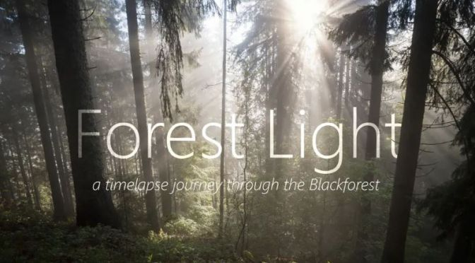 Timelapse Travel Video: 'Forest Light – The Black Forest, Bavaria, Germany'