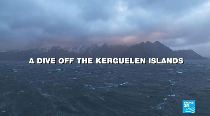 Travel & Nature Videos: Kerguelen Islands, France