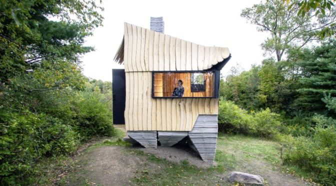 Future Of Homes: 'Ashen Cabin' – 3D Printed, Waste Wood Building Material