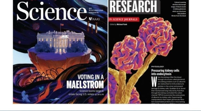 TOP JOURNALS: RESEARCH HIGHLIGHTS FROM SCIENCE MAGAZINE (OCT 16, 2020)