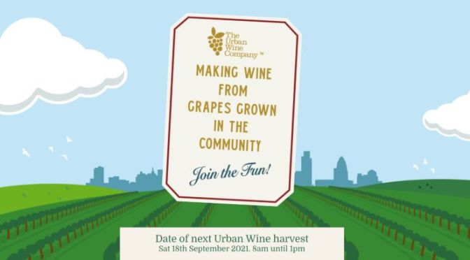 Winery Profile Podcast: The Urban Wine Company, London, 'CHATEAU TOOTING'