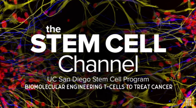 Research: 'Biomolecular Engineering T-Cells to Treat Cancer' (UCTV Video)
