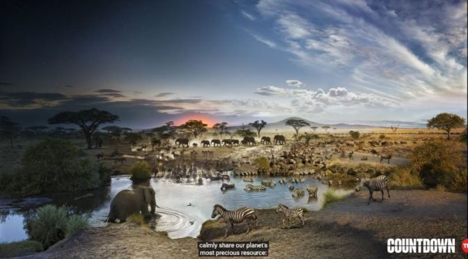 Wildlife Video: '24 Hours On Earth' – In One Image