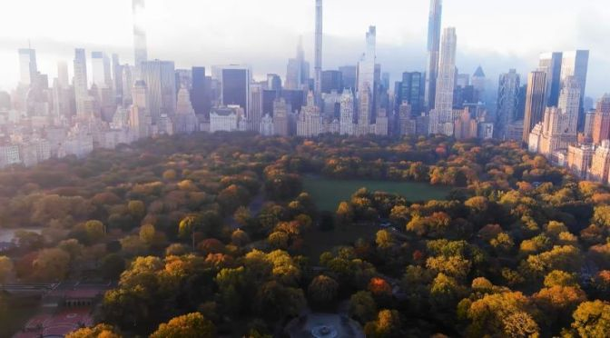 Aerial Travel: 'Autumn Over  Central Park, NY'