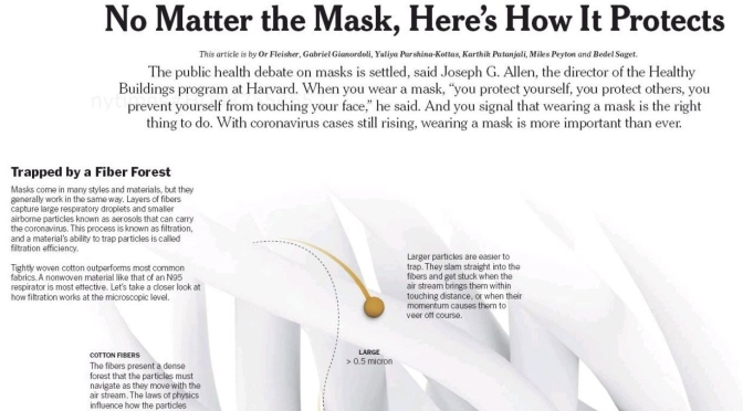 Infographic: 'The Science Of How Masks Protect'