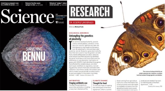 TOP JOURNALS: RESEARCH HIGHLIGHTS FROM SCIENCE MAGAZINE (NOV 6, 2020)