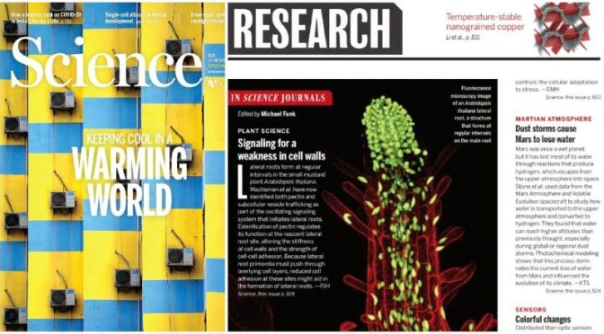 TOP JOURNALS: RESEARCH HIGHLIGHTS FROM SCIENCE MAGAZINE (NOV 13, 2020)