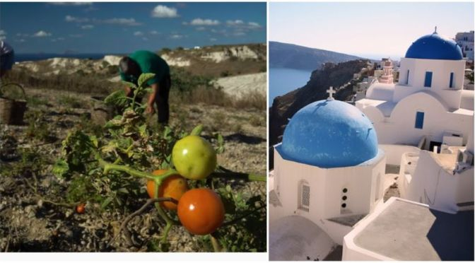 Food & Culture: 'Saving The Tomato Of Santorini Island, Greece' (Video)