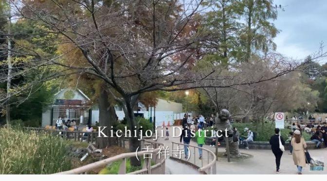 Walking Tour Video: Inokashira Park, Kichijoji District In Tokyo, Japan