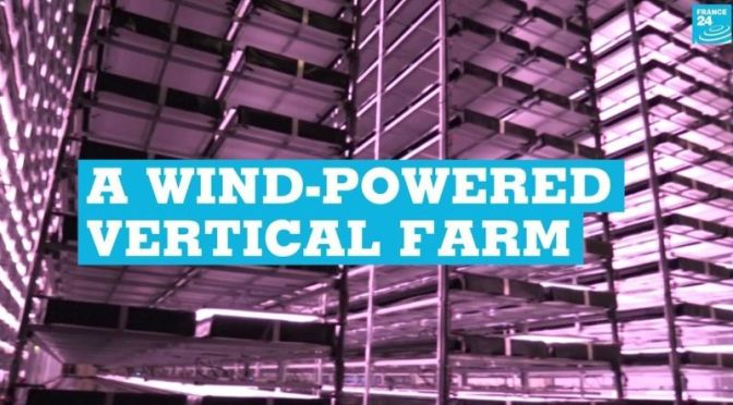 Sustainable Foods: Inside A 'Wind-Powered Vertical Farm' In Denmark (Video)