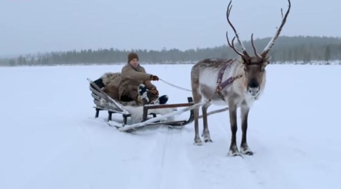 Winter Travel: 'Reindeer Moments' From BBC Earth