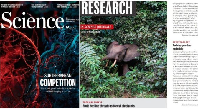 TOP JOURNALS: RESEARCH HIGHLIGHTS FROM SCIENCE MAGAZINE (DEC 4, 2020)