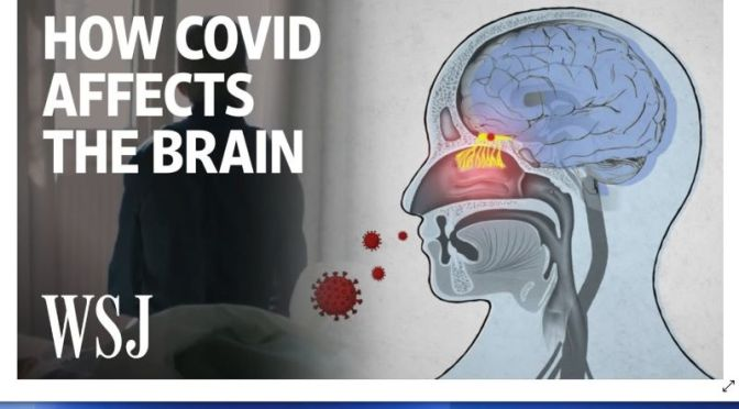 Health: 'How Covid-19 Affects The Brain' (Video)