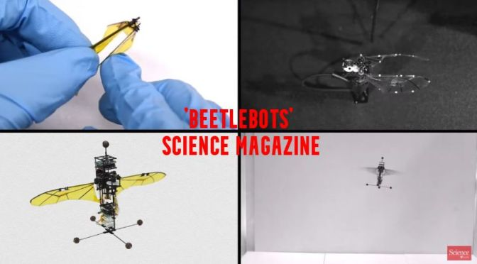 Science: Researchers Build Crash-Resistant Flying 'Beetlebot' (Video)