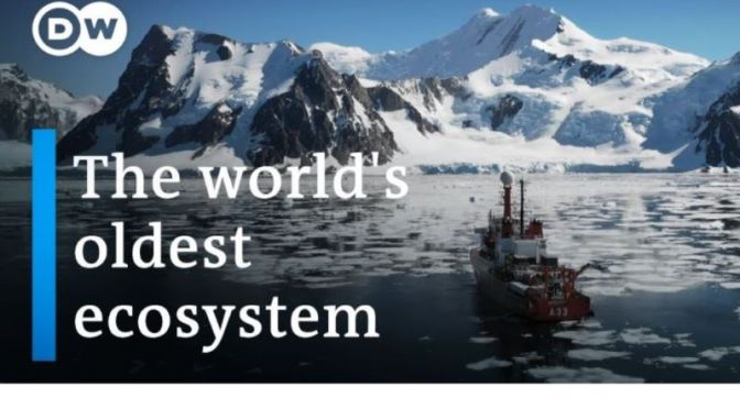 Documentary: 'The Battle Over Antarctica' (Video)