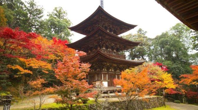 Autumn In Japan: Saimyoji Temple In Kōra (Video)