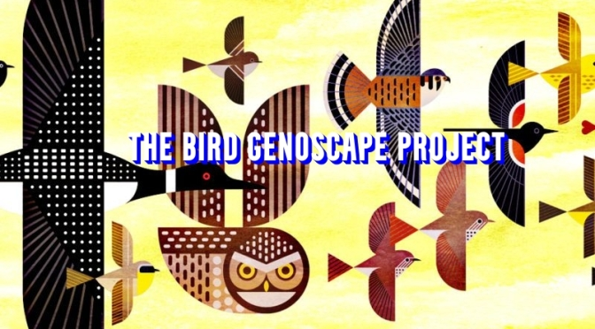 Science & Wildlife: 'The Bird Genoscape Project'