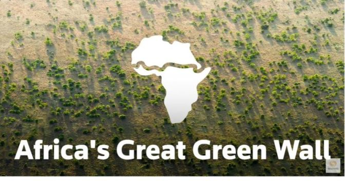 Ecology: 'The Great Green Wall' Of Africa (Video)
