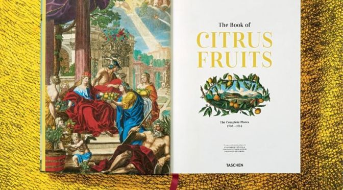 Arts & History: 'The Book Of Citrus Fruits' By J.C. Volkamer (Taschen)