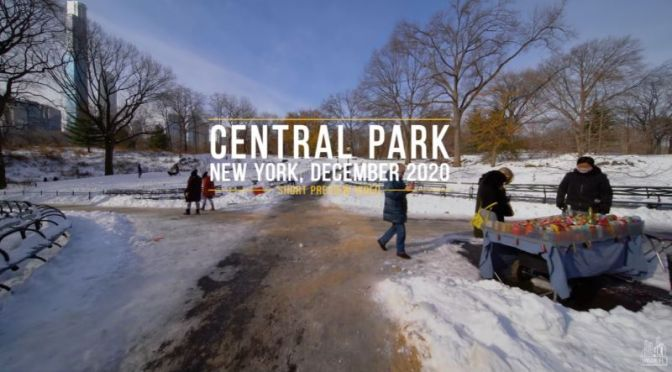 Winter Views: 'Central Park' In New York City