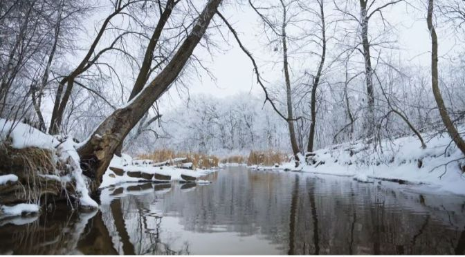 Nature: 'Christmas Creek' In Minnesota (Video)